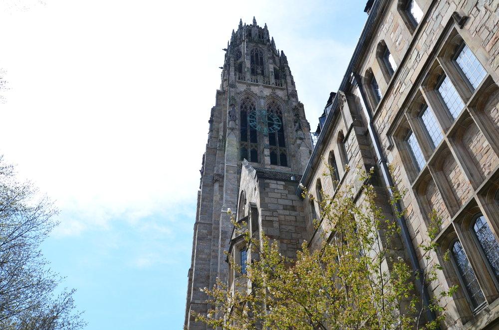yale-university-zen-admissions