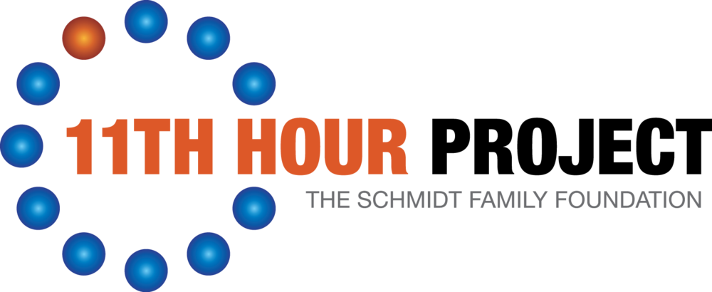 Copy of 11th Hour logo with Schmidt.png