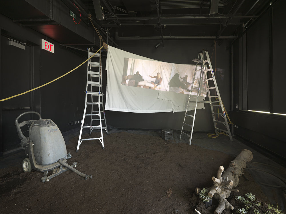 A Wild Ass Beyond: ApocalypseRN,  2018 Collaborative installation with Sondra Perry, Nora N. Khan, and Caitlin Cherry (Performance Space New York, NY. Photo: Genevieve Hanson)