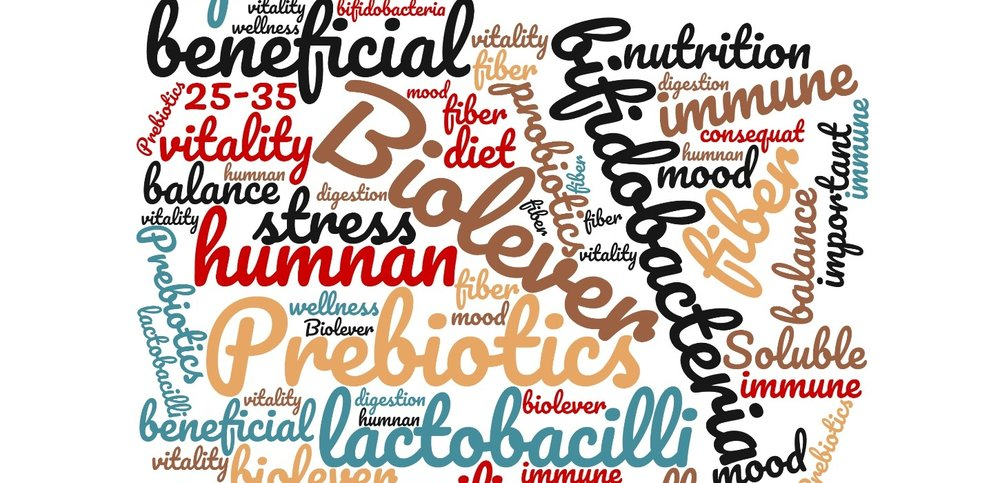 Prebiotics: How To Feed Your Friendly Bacteria