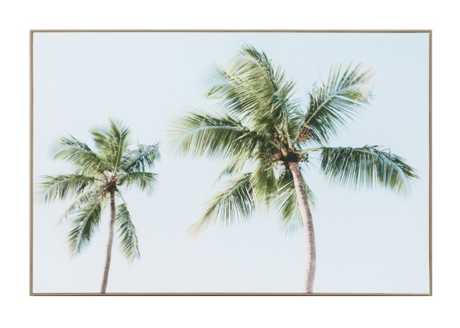 Coconut Palms Canvas fccocpal.jpg