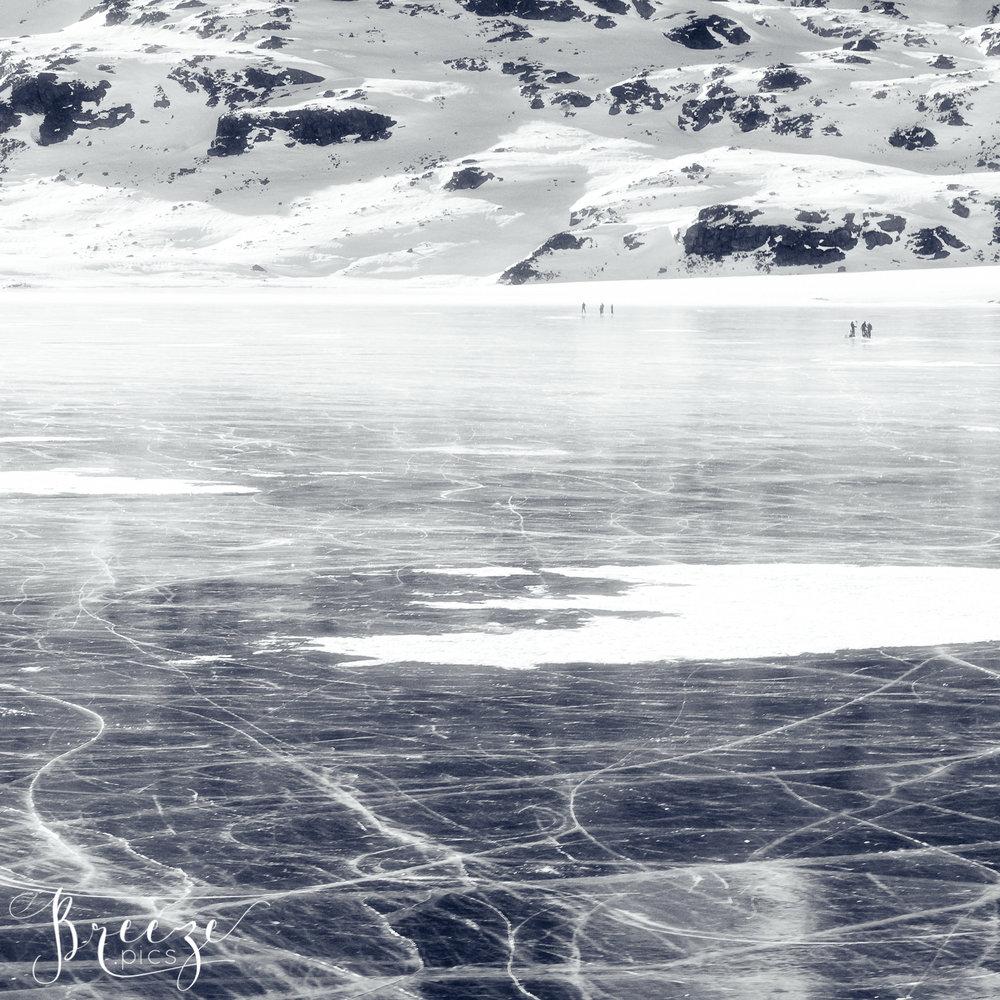 Glacier_trails.jpg