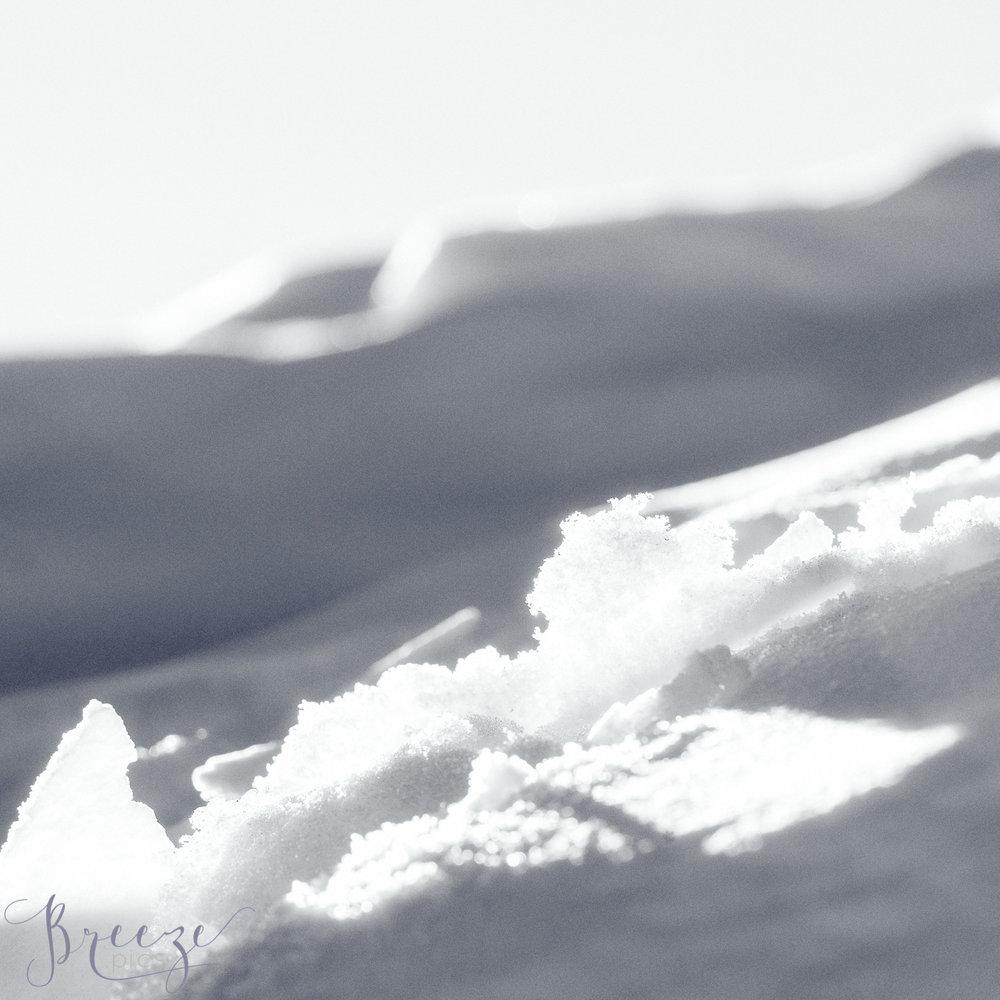 Sunlit_icicles.jpg