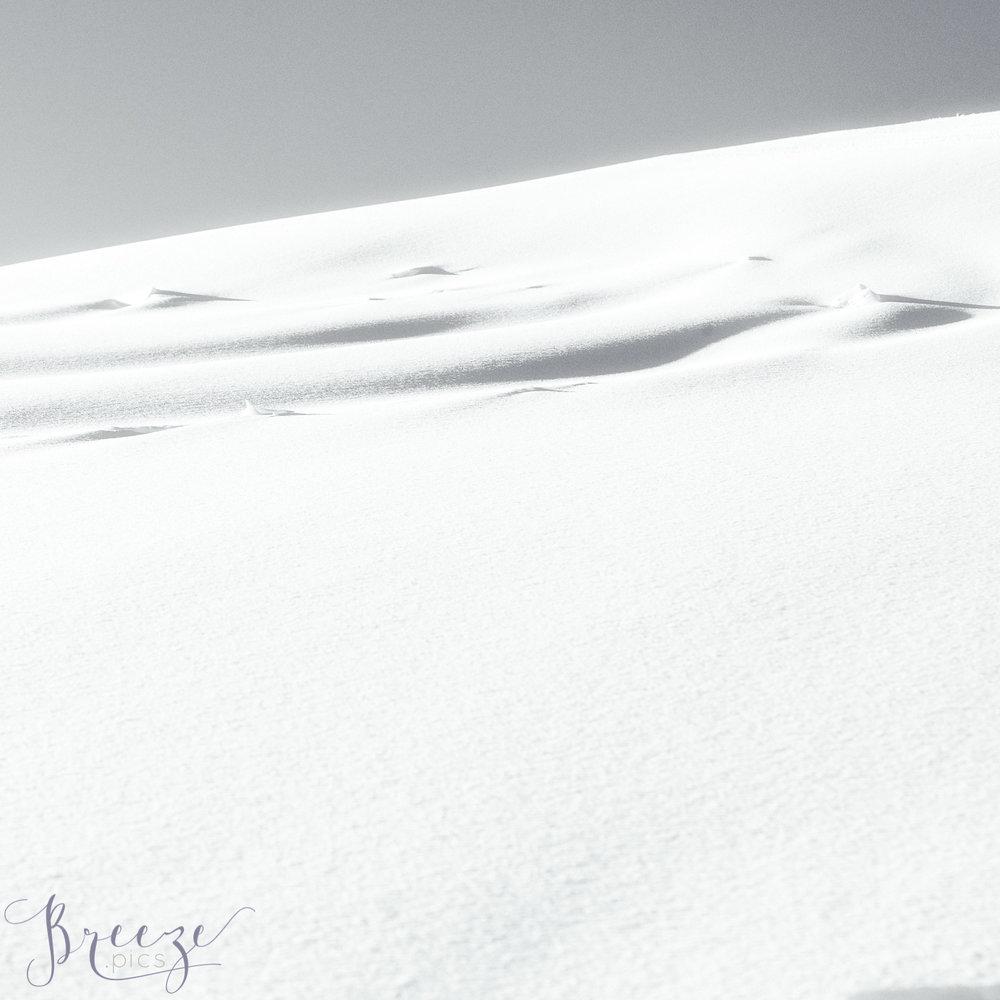 Windswept_snow.jpg