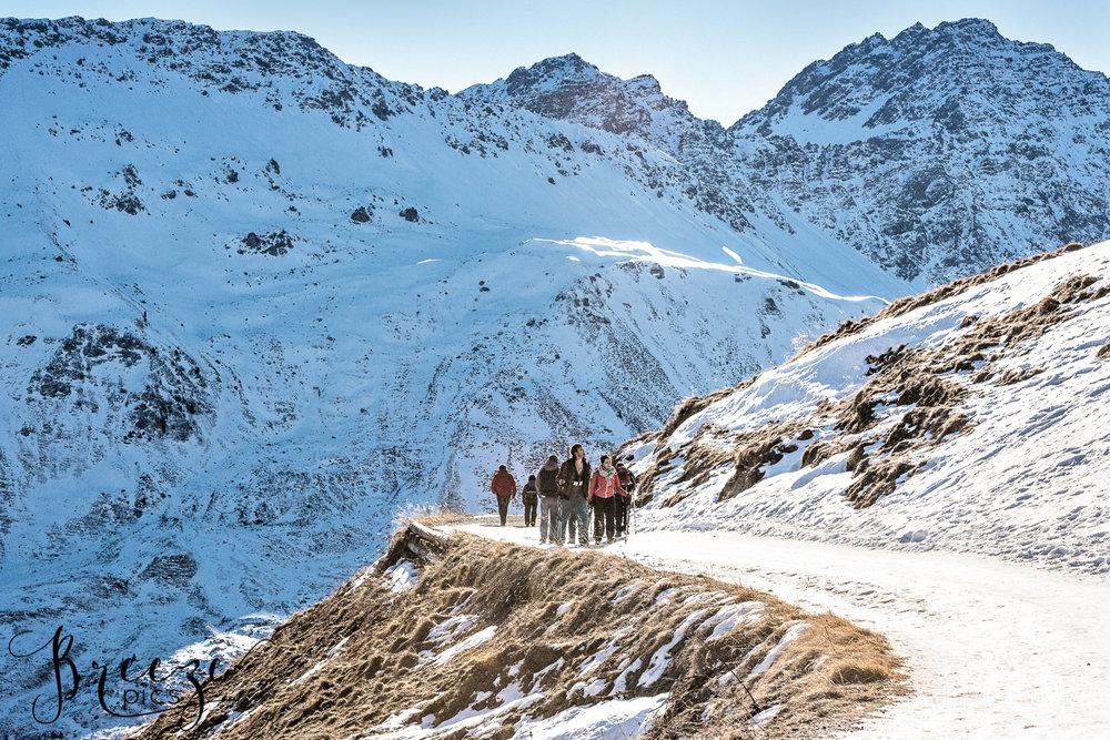 Alpine_trail.jpg