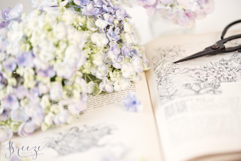 Beetons_Gardening_Book.jpg