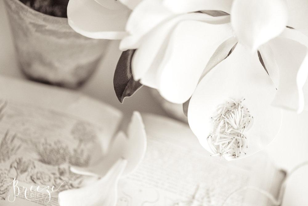 Magnolia_garden_book_still_life_1-Ed.jpg