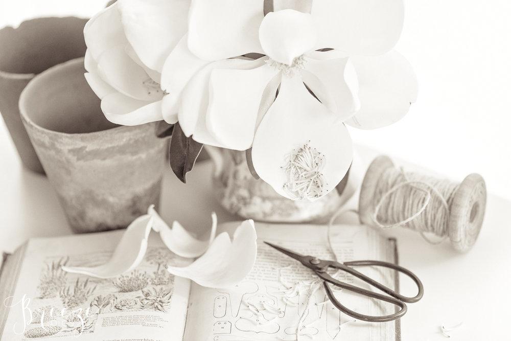 Magnolia_garden_book_still_life_3-Ed.jpg
