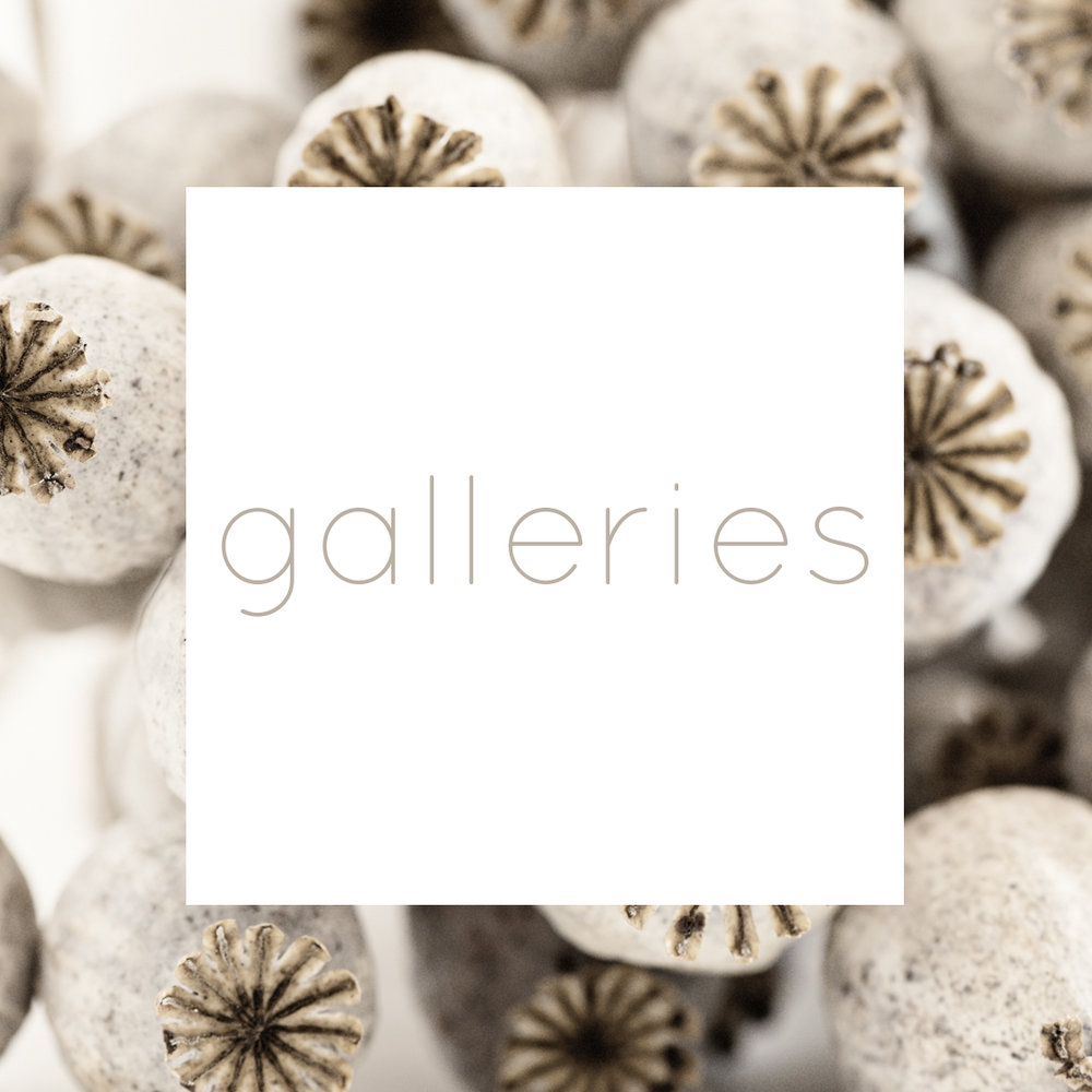 photography galleries