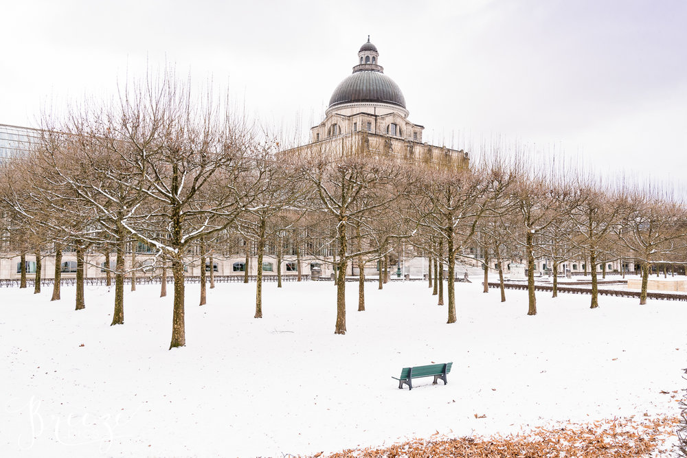 Munich_Winter_Park.jpg