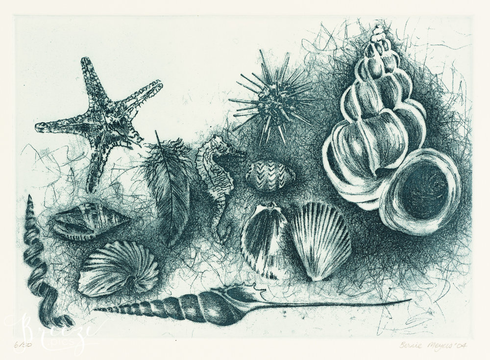 Shells_and_Seahorse_etching.jpg