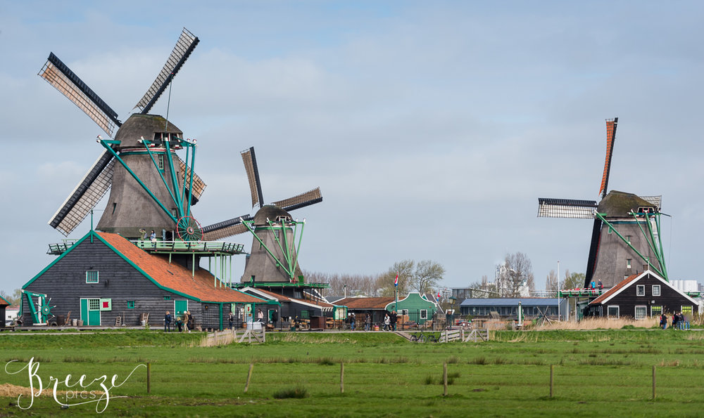 Windmills near Keukenhof Gardens, Netherlands, Holland, Breeze Pics, Bernadette Meyers