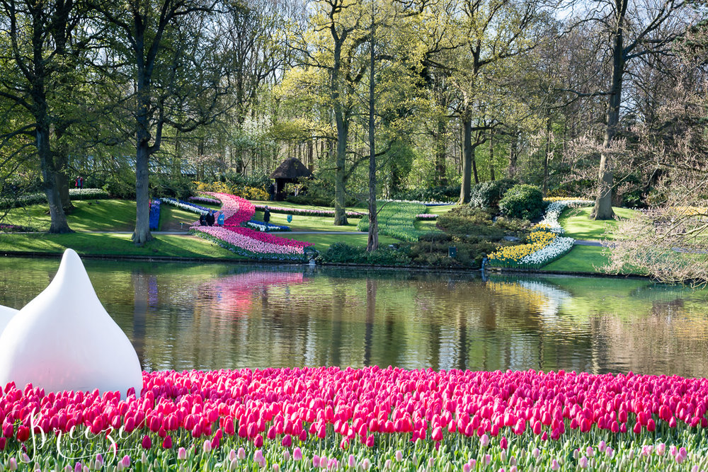 Tulips and Flowers in Keukenhof Gardens, Netherlands, Holland, Breeze Pics, Bernadette Meyers