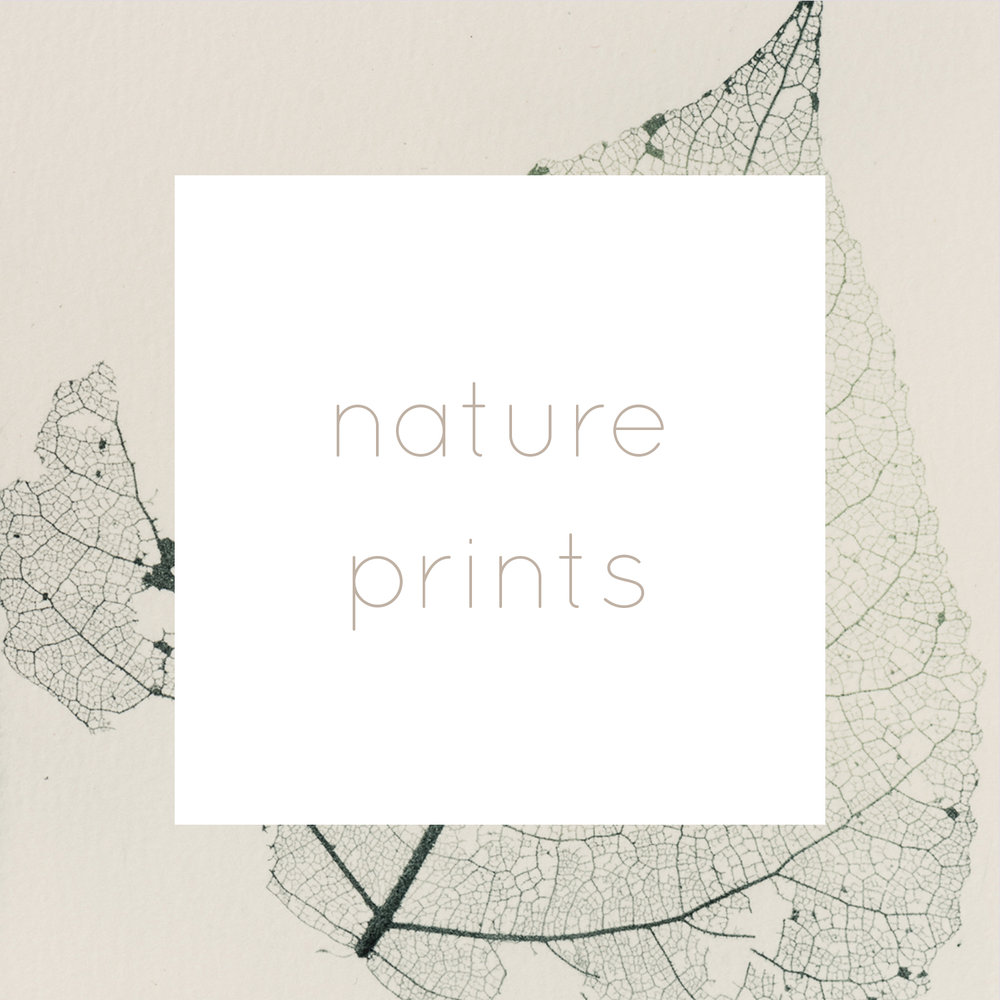 nature etchings