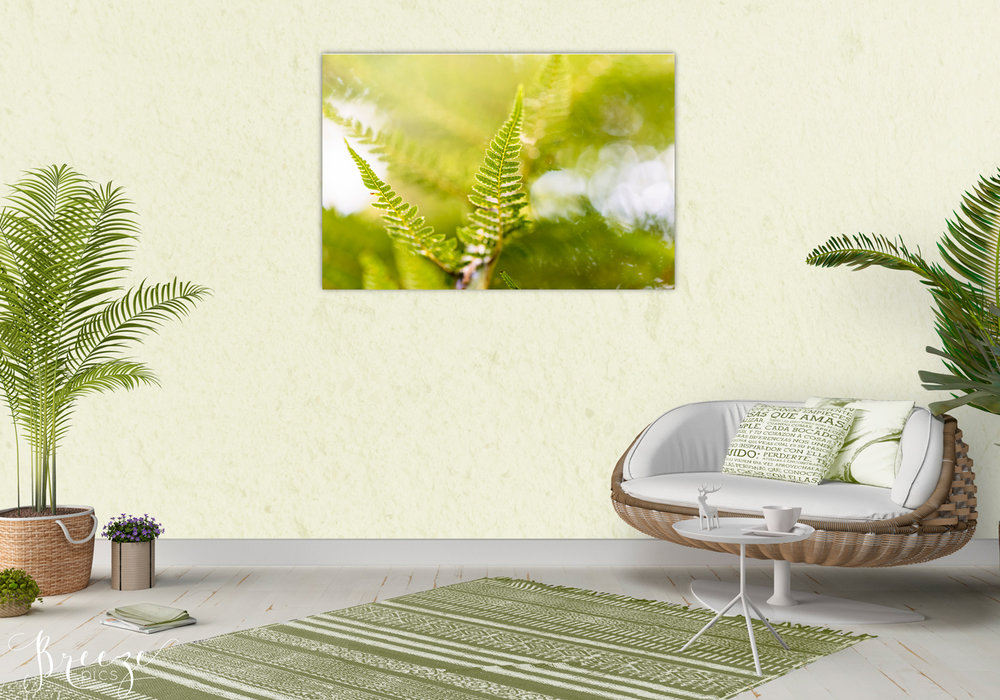 Green fine art nature photograph, home decor prints, Breeze pics