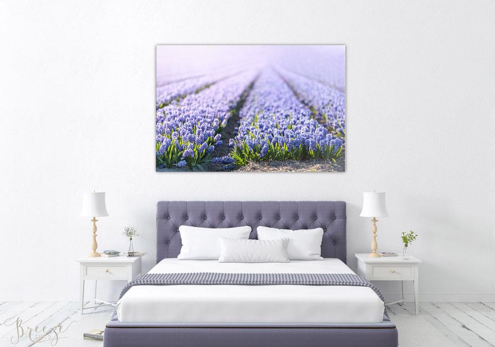 Purple fine art nature photograph, home decor prints, Breeze pics