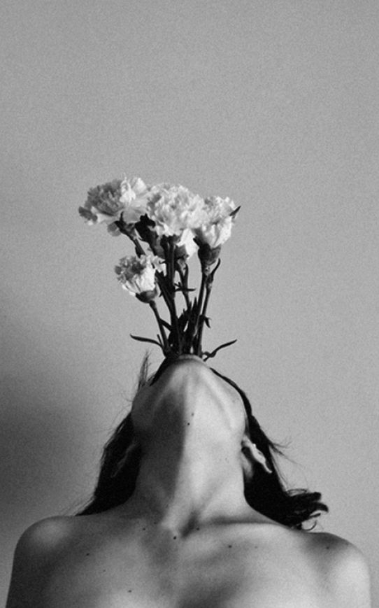 promomouthflower.jpg