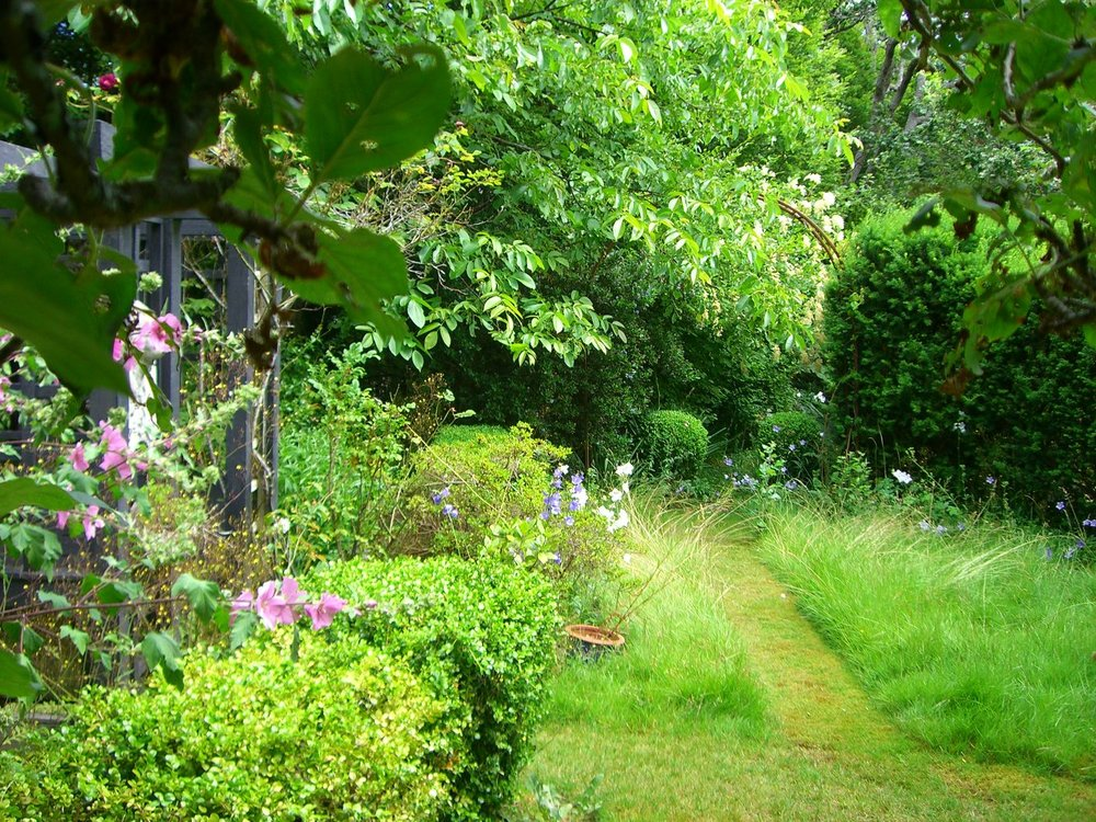 We kept an area in the back of the garden sort of wild, like a meadow and just mowed a path through the tall grass. We were inspired by gardens we had seen in France and the UK.