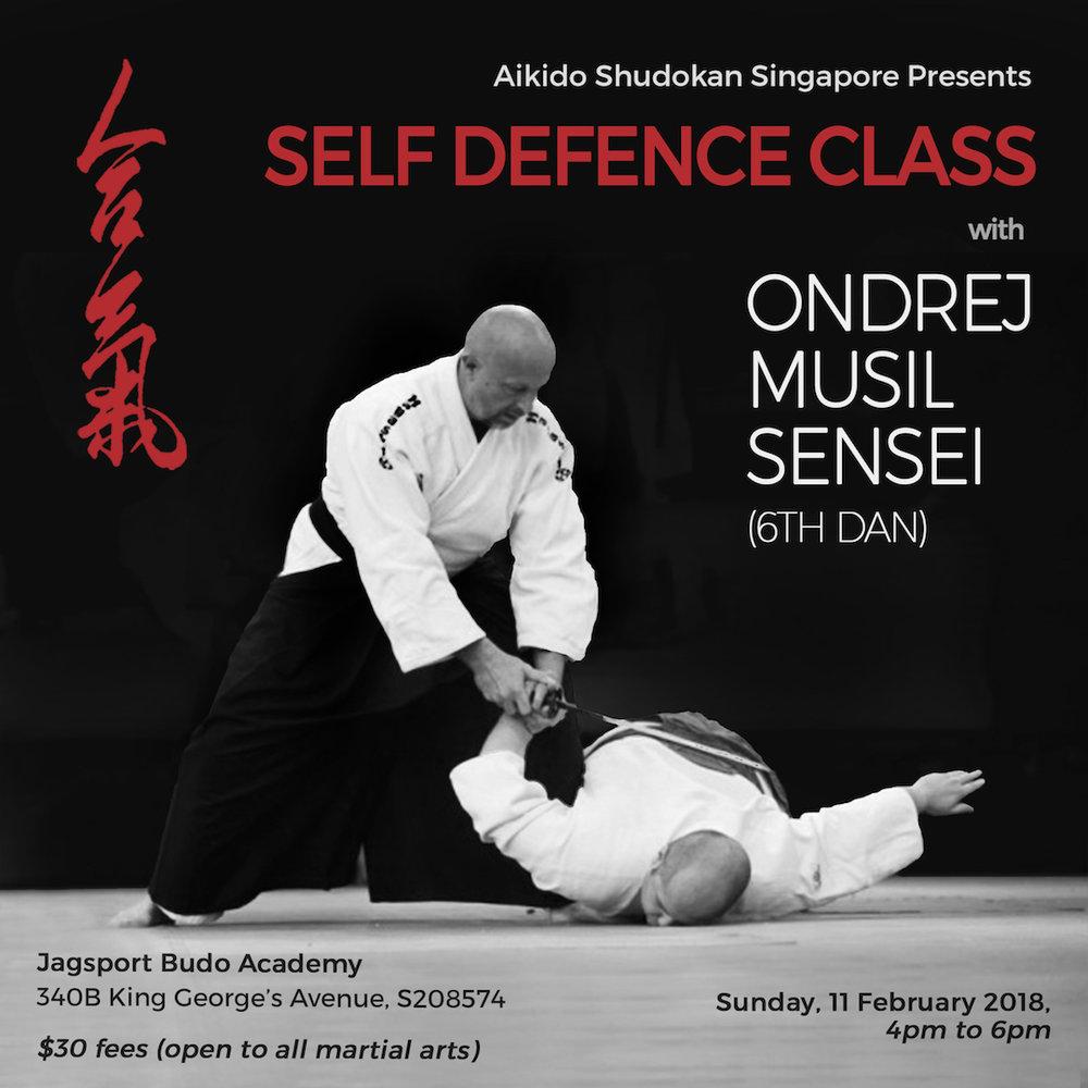 Ondrej Musil Sensei Self Defence Class Poster.jpg