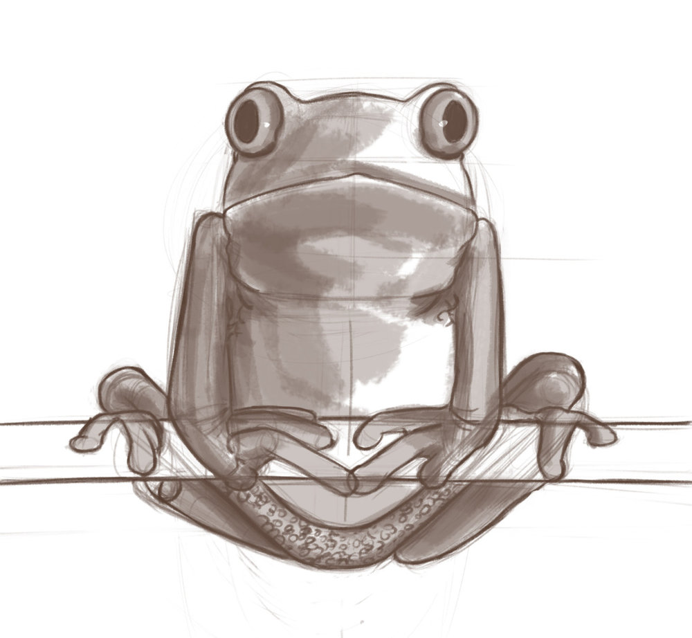 Frog_Sketch.jpg
