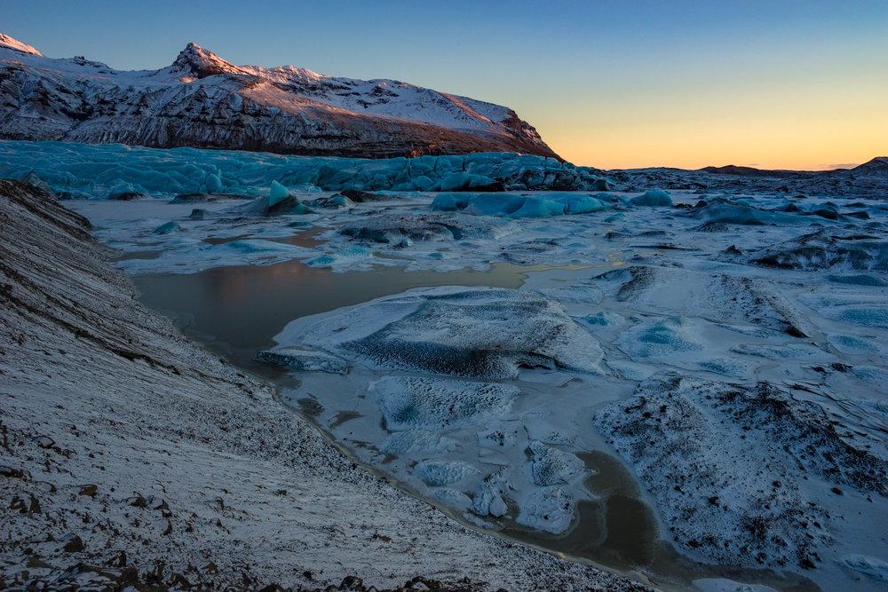 Wild Goose - Iceland
