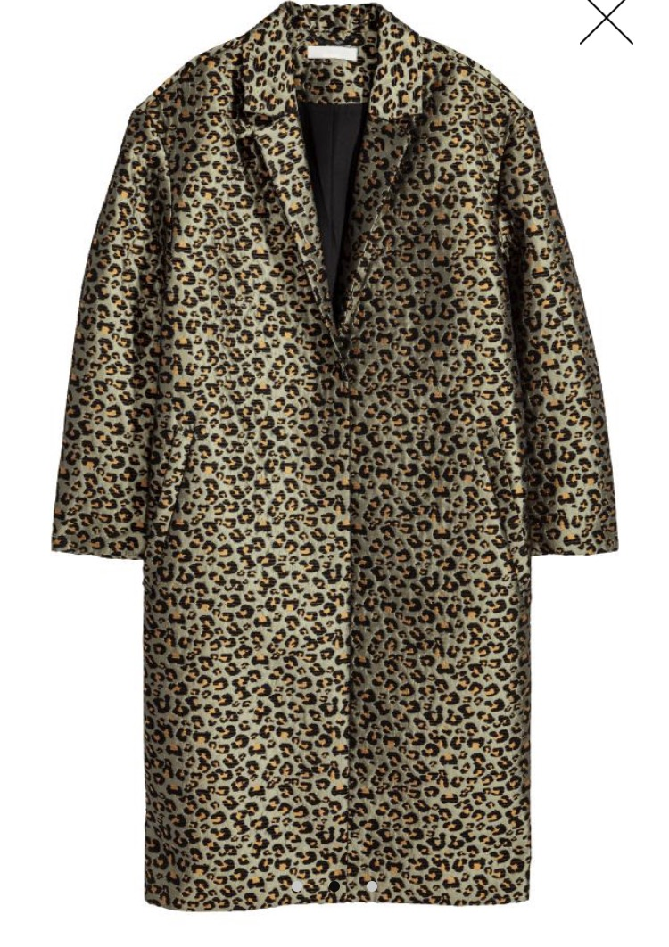 Leopard H and M.jpg