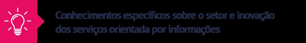 11.Conhecimentos específicos sobre o setor e inovação dos serviços orientada por informações
