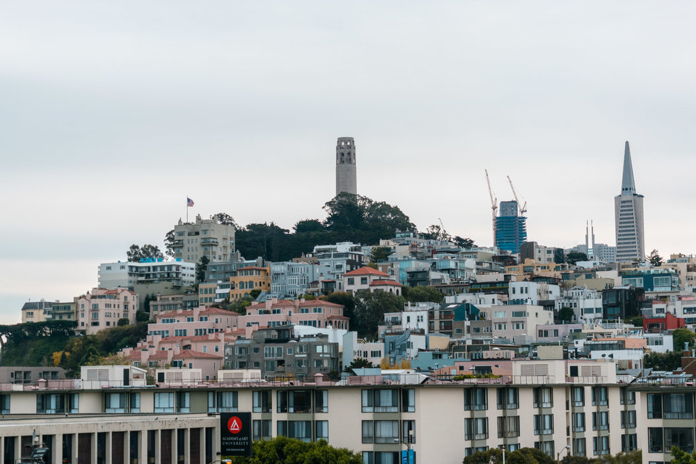 amaris-woo-san-francisco-cityscape-photography