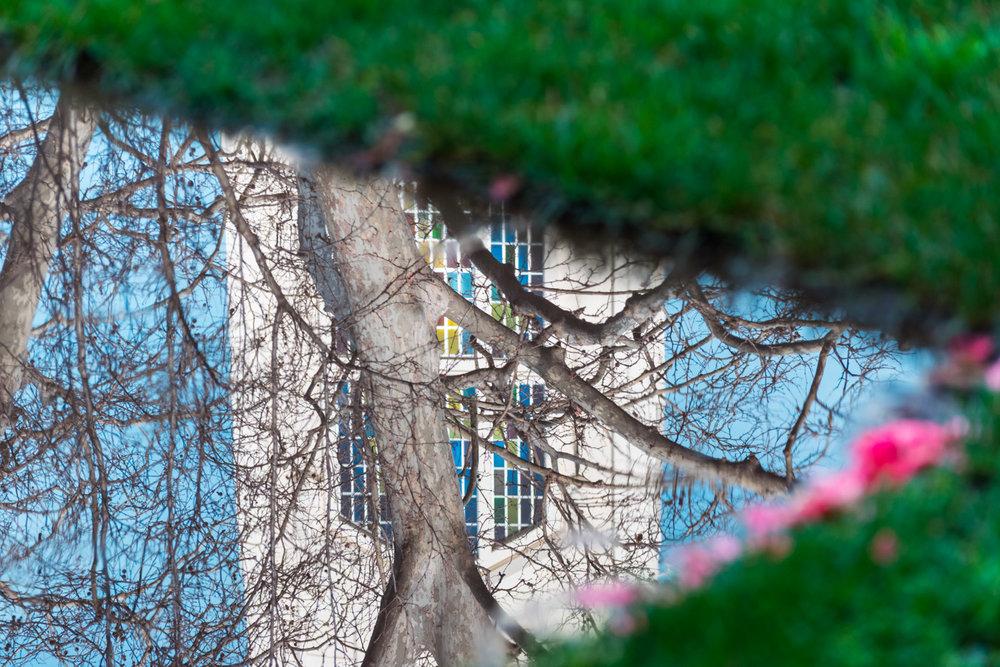 amaris-woo-university-pacific-stockton-photography