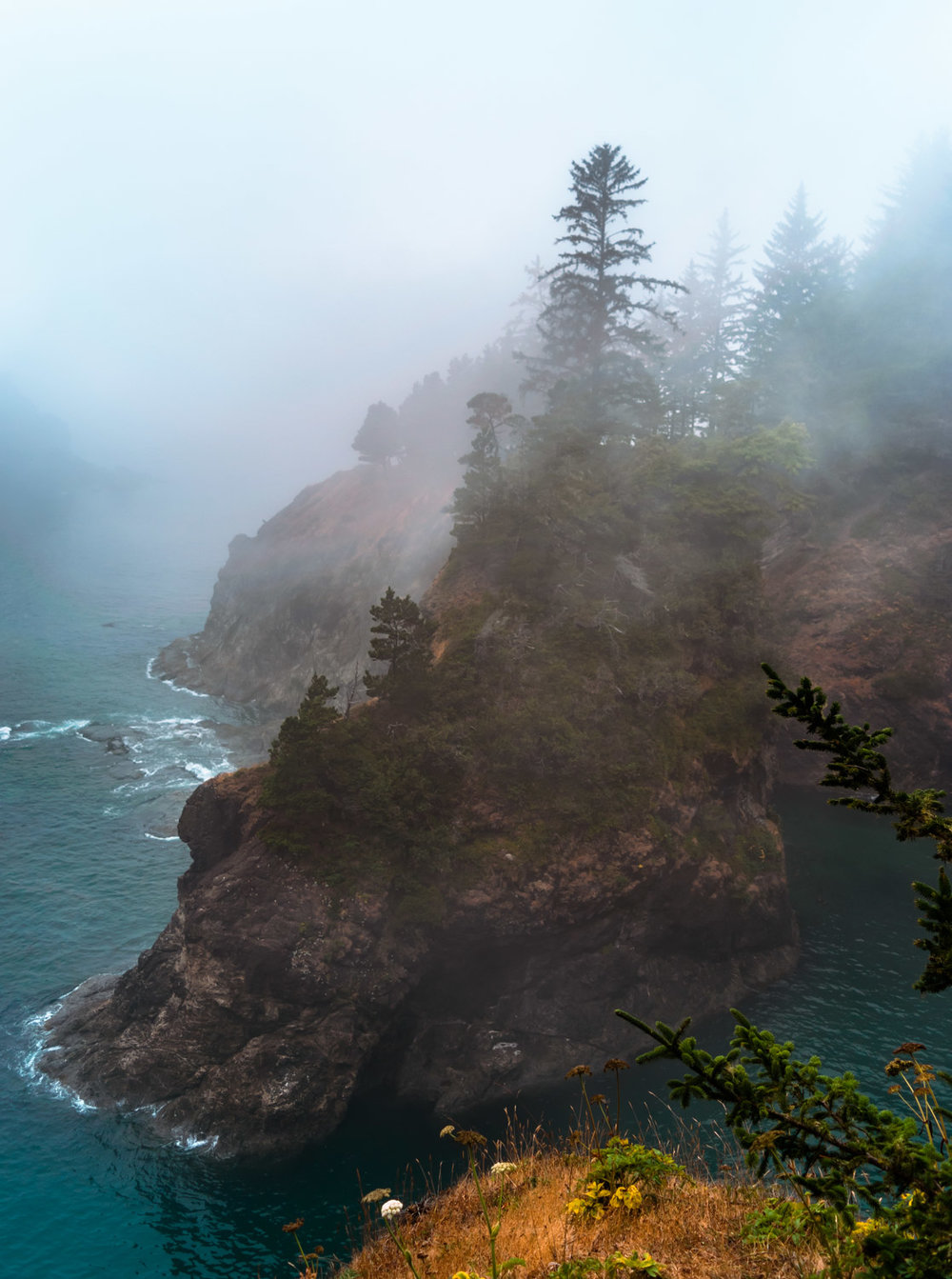 oregon-coast-fog