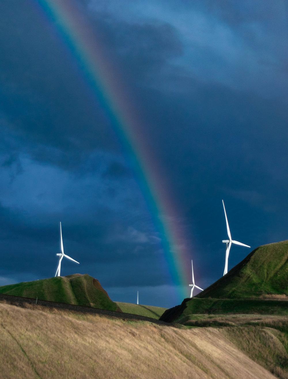 amaris-woo-rainbow-windmill-altamont-pass