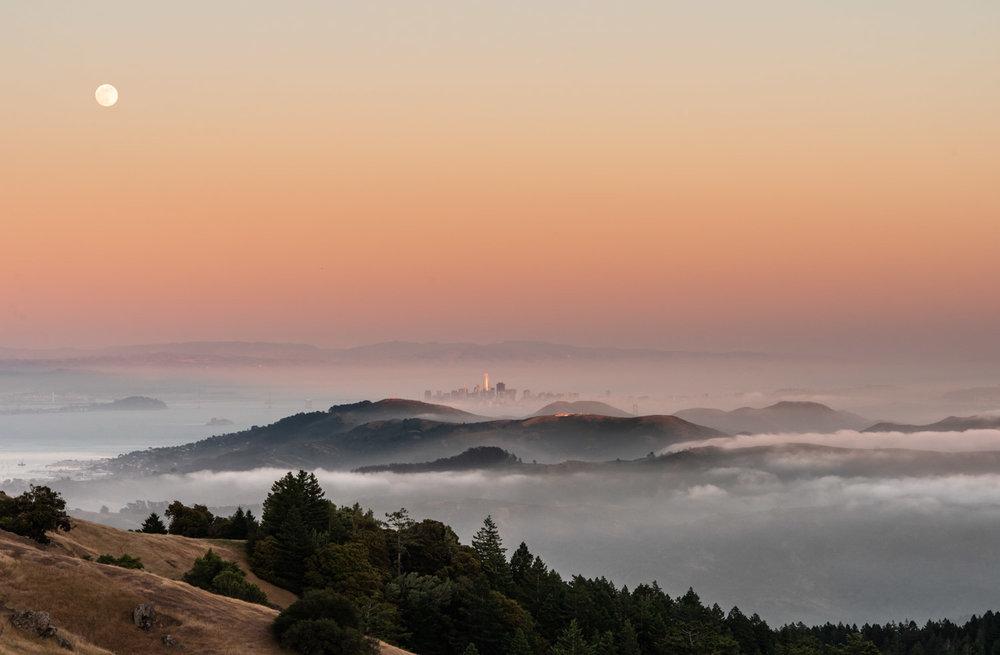 mount-tamalpais-fog
