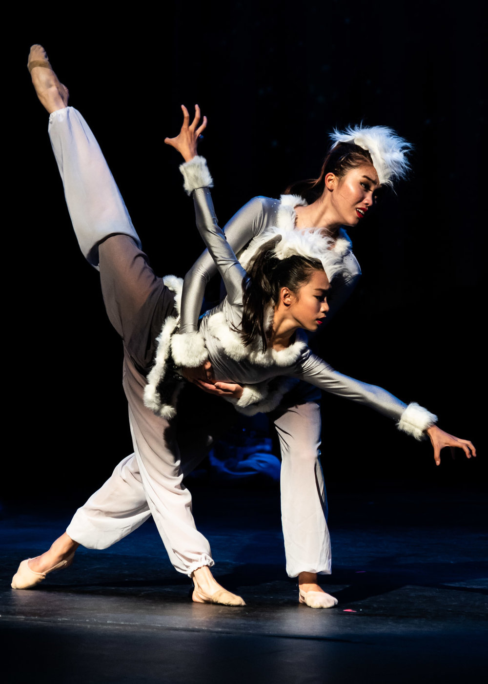 Silicon Valley Dance Academy