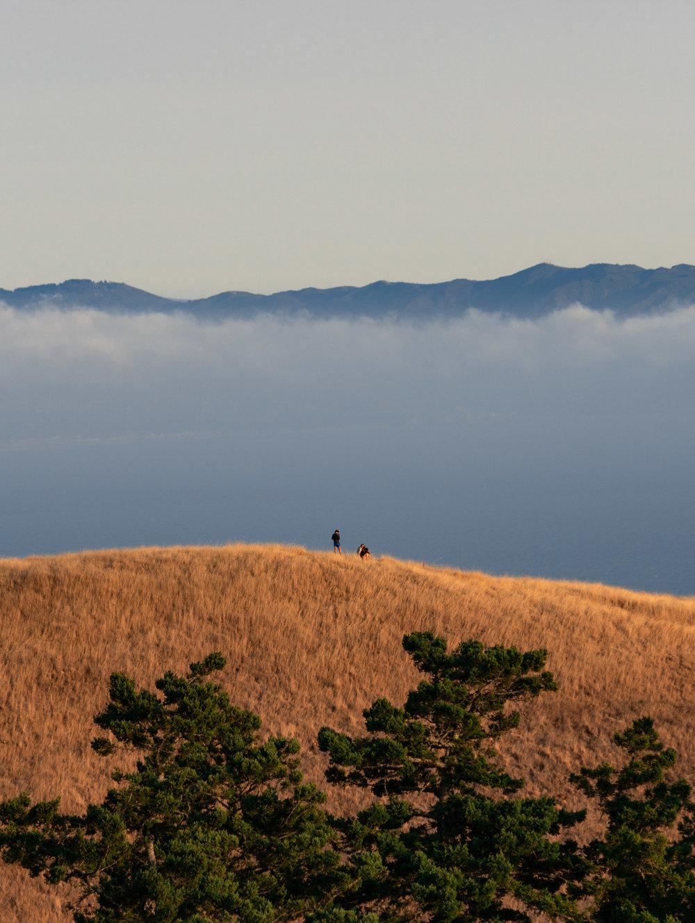 amaris-woo-photography-mount-tamalpais-marin-county