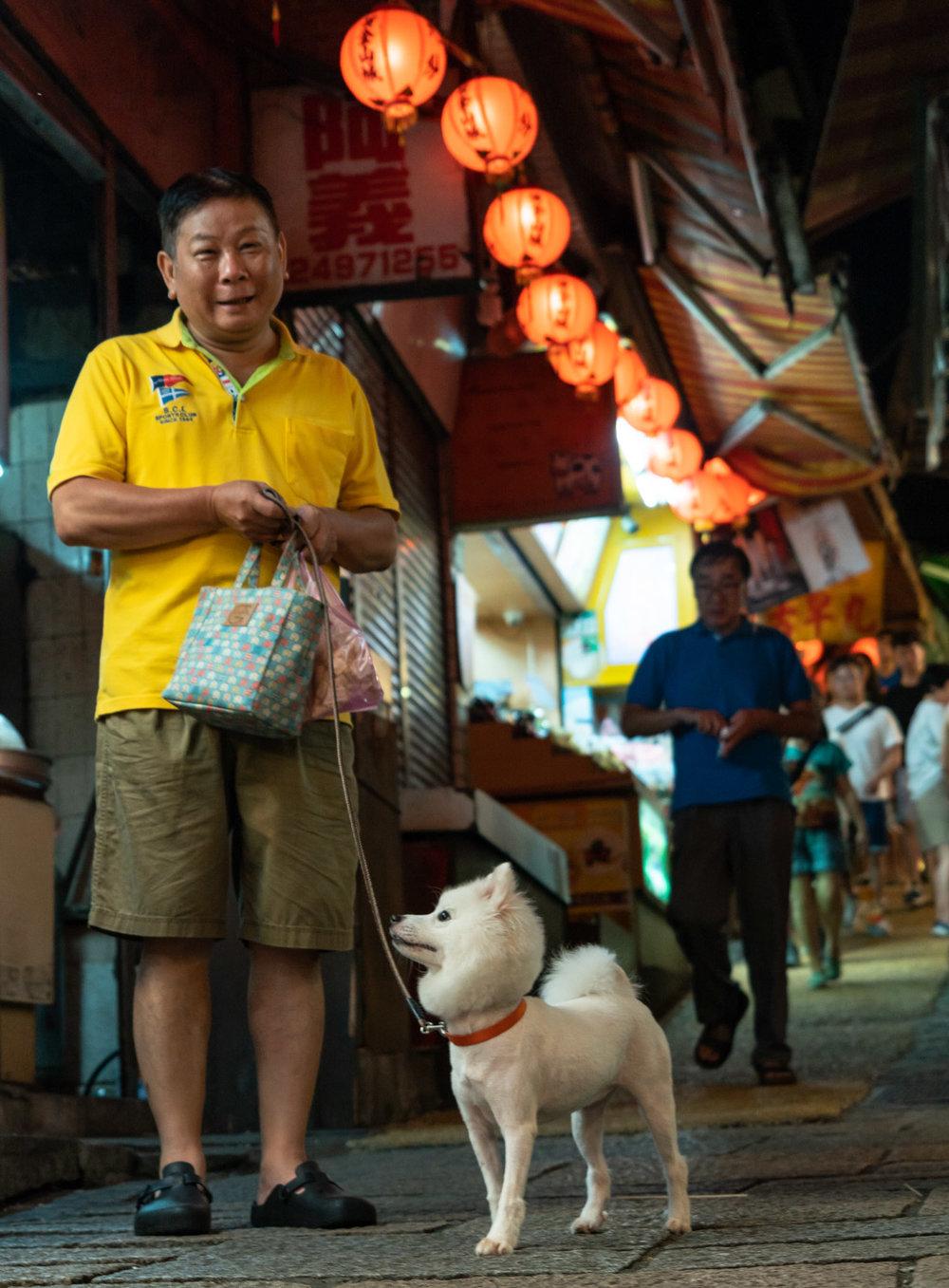 jiufen-street-dog