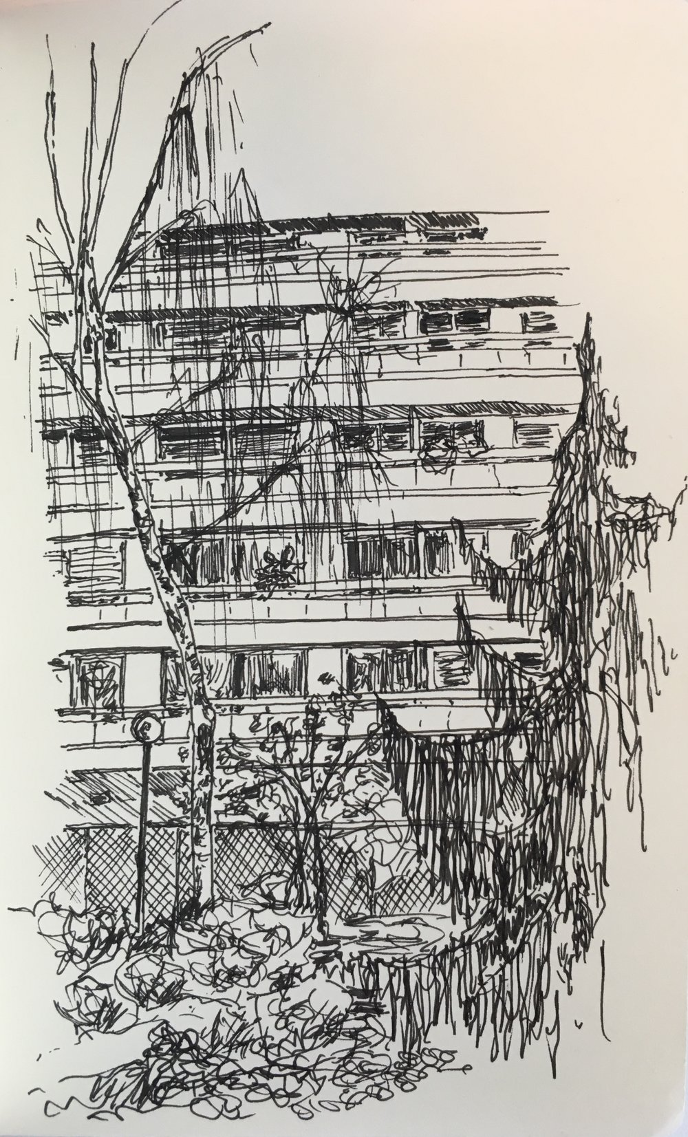 Trees and building, 2017.
