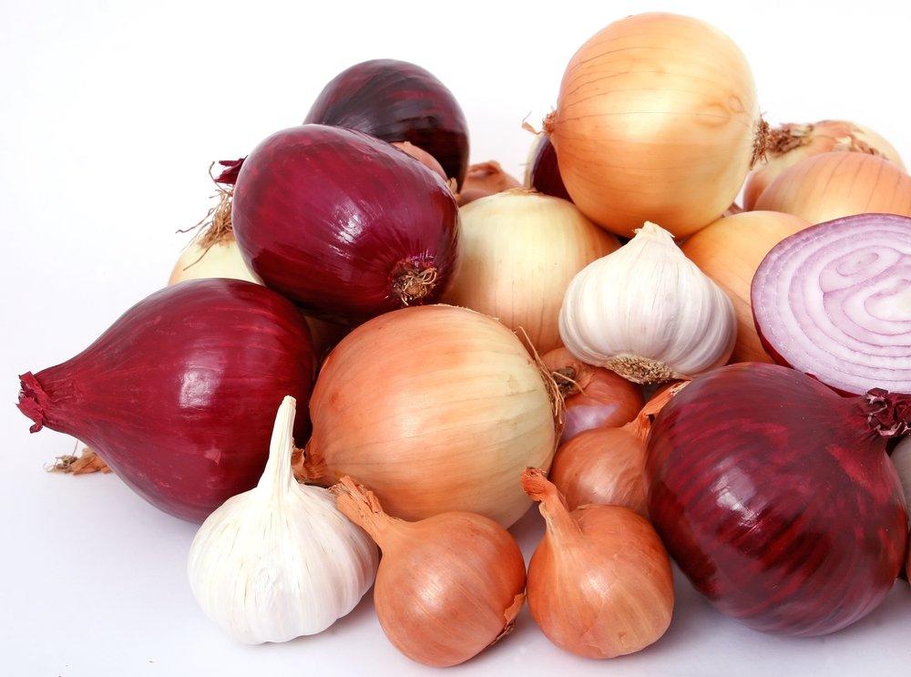 nutrigenomics onions
