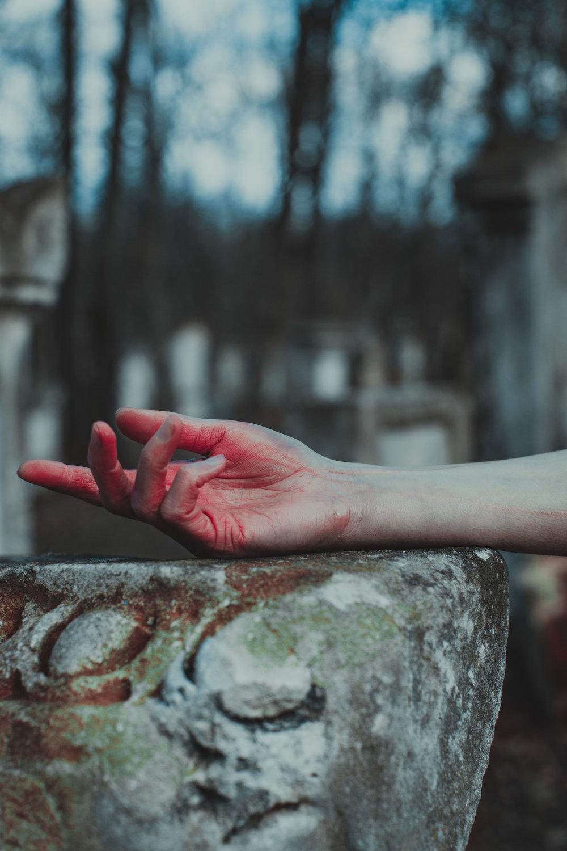 ladymacbeth13.jpg