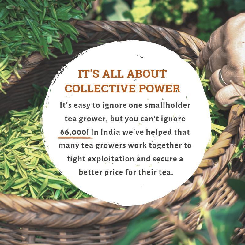 It's all about Collective Power (2).png