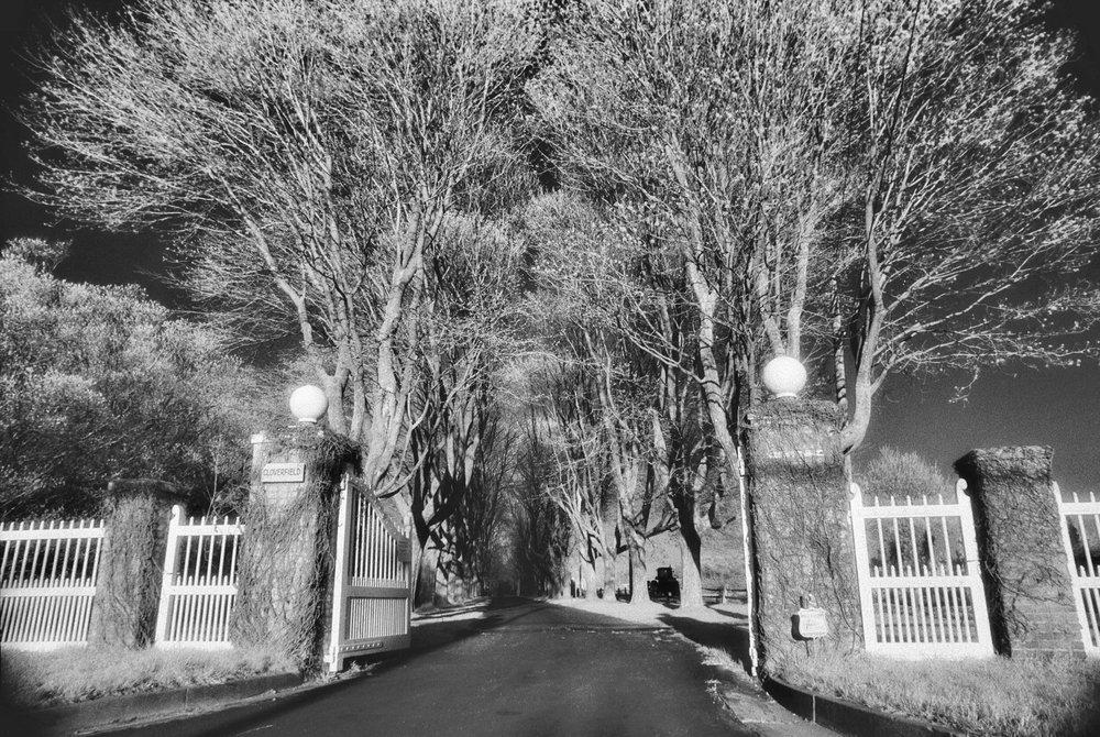 infrared-hamptons-gate.jpg
