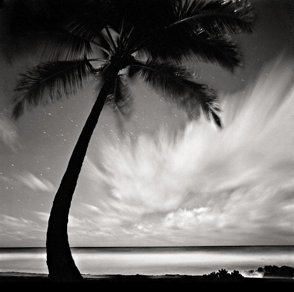 palm-tree-clouds-2.jpg