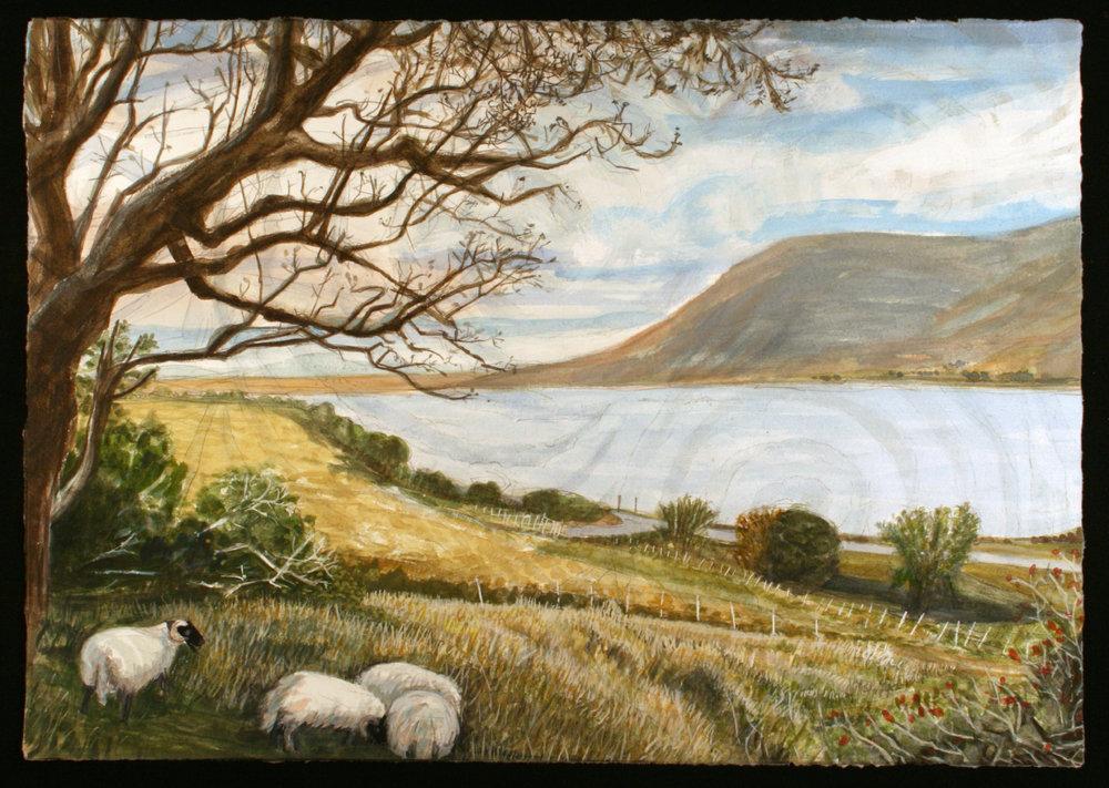 "Landscape with sheep   Watercolor/gouache/pencil, 14x20"", 2017"
