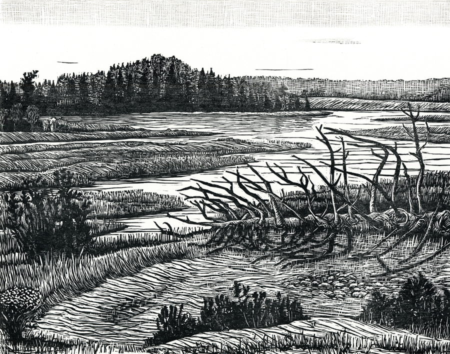 "Dead Fall, Maine   Woodcut, 15x18"", 2009"