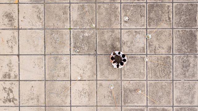 """@_55sp ・・・ Towards the last Unicorn com curadoria de @no.stereo e @artreasearchmapno     Gabriela Maciel e Marcela Crosman apresentam 'INTENÇÃO _ ação coletiva' A força do gesto, o fluxo, a intenção Um exercício de libertação Um movimento de unidade, ampliado e amplificado Em 25 de novembro de 2018, na abertura da exposição Monumental _ A Arte Delas """", com curadoria de Marc Pottier, na Marina da Glória, no Rio de Janeiro, Gabriela Maciel e Marcela Crosman apresentaram uma ação coletiva composta por oito mulheres. Juntas, elas escreveram palavras de liberdade, força e intenções positivas,no solo, utilizando a água do mar da Baía de Guanabara.          Next Tuesday Towards the last Unicorncurated by No Stereo and Art Research Map at 55SP and online with 9 artist's artworks, among them: 'INTENTION _ Collective Action' By Gabriela Maciel e Marcela Crosman  The force of the gesture, the flow, the intention An exercise of liberation A movement of unity, enlarged and amplified  On November 25th, 2018 at the opening of the """"Monumental exhibition _ A Arte Delas"""", curated by Marc Pottier, at Marina da Glória, Rio de Janeiro, Gabriela Maciel and Marcela Crosman presented a collective action composed by eight women.  Together, they wrote words of freedon, empowerment and positive intentions, on the ground, using the sea water from Guanabara Bay.      """"Towards The Last Unicorn"""" Group Exhibition with Bob Bicknell-Knight, Daniel van Straalen, Diogo Evangelista, Gabriela Maciel, Gioia di Girolamo, Ivan Divanto, João Paulo Serafim, Mit Borràs, Paulo Arraiano, Virginia Lee Montgomery At 55SP. OPENING 2ND APRIL -18-21H - Rua Barão de Tatui, 377Curated By Art Research Map And No.Stereo @gabriela___maciel  @tal.art.br @marcelacrosman @_55sp @artresearchmap @no.stereo #gabrielamaciel #55sp #artresearchmap #nostereocontemporary"""