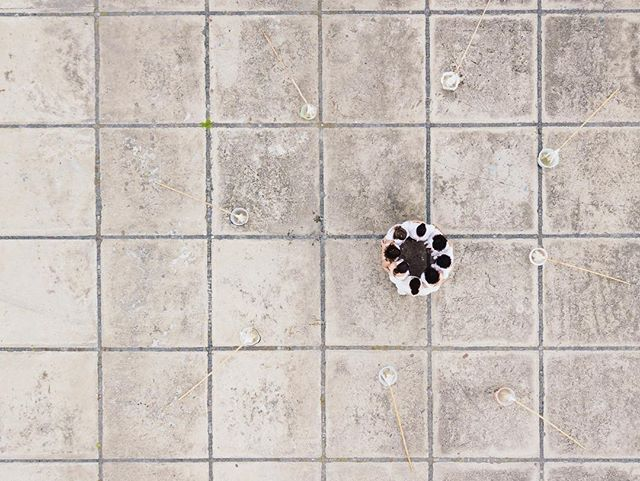 """55SP apresenta 'Towards the Last Unicorn ', uma exposição com curadoria de no.stereo e Art Research Map e texto de Catarina Vaz . Foi convidado um grupo de artistas para você mostrar trabalhos que serão exibidos na 55SP (espaço físico), mas também online.  Abertura dia 2 de Abril - 3a f das 18h as 21h  Exibição dos Videos - Offline - no espaço 55Sp de 2 a 6 Abril Exibição dos Videos Online - de 3 de abril a 1o de Junho. ……………………………........................... """"Towards The Last Unicorn"""" Group Exhibition with Bob Bicknell-Knight, Daniel van Straalen, Diogo Evangelista, Gabriela Maciel & Marcela Crosman, Gioia di Girolamo, Ivan Divanto, João Paulo Serafim, Mit Borràs, Paulo Arraiano, Virginia Lee Montgomery At 55SP. Curated By Art Research Map And No.Stereo @bob.bk1 @danielvanstraalen @gabriela___maciel @diogo__evangelista @gioia_di_girolamo @divanto @jpserafim.miiac @mitborras @pauloarraiano @skinnyaliens @_55sp @artresearchmap @no.stereo  @catarinawent / / / 📷 'Intenção' Gabriela Maciel & Marcela Crosman Drone full hd 4'25"""" 2018 _ 2019  Ação coletiva: Aline Matulja, Daniela Kohn, Fernanda Schmidt, Gabriela Maciel, Laura Zúñiga, Marcela Crosman, Martha Dornelles e Maria de Fátima. Drone: Thomas Mendel Foto still: Tatiana Altberg Convite para criação da obra e apresentação na exposição Monumental 'A Arte Delas': Marc Pottier 'Intention' Gabriela Maciel & Marcela Crosman Drone full hd 4'25"""" 2018 _ 2019  Group action: Aline Matulja, Daniela Kohn, Fernanda Schmidt, Gabriela Maciel, Laura Zúñiga, Marcela Crosman, Martha Dornelles and Maria de Fátima. Drone: Thomas Mendel Photo still: Tatiana Altberg Convite para criação da obra e apresentação na exposição Monumental 'A Arte Delas': Marc Pottier  #bobbicknellknight #danielvanstraalen #gabrielamaciel #diogoevangelista #gioiadigirolamo #ivandivanto, #joaopauloserafim #mitborras #pauloarraiano #virginialeemontgomery #55sp #artresearchmap #nostereocontemporary"""