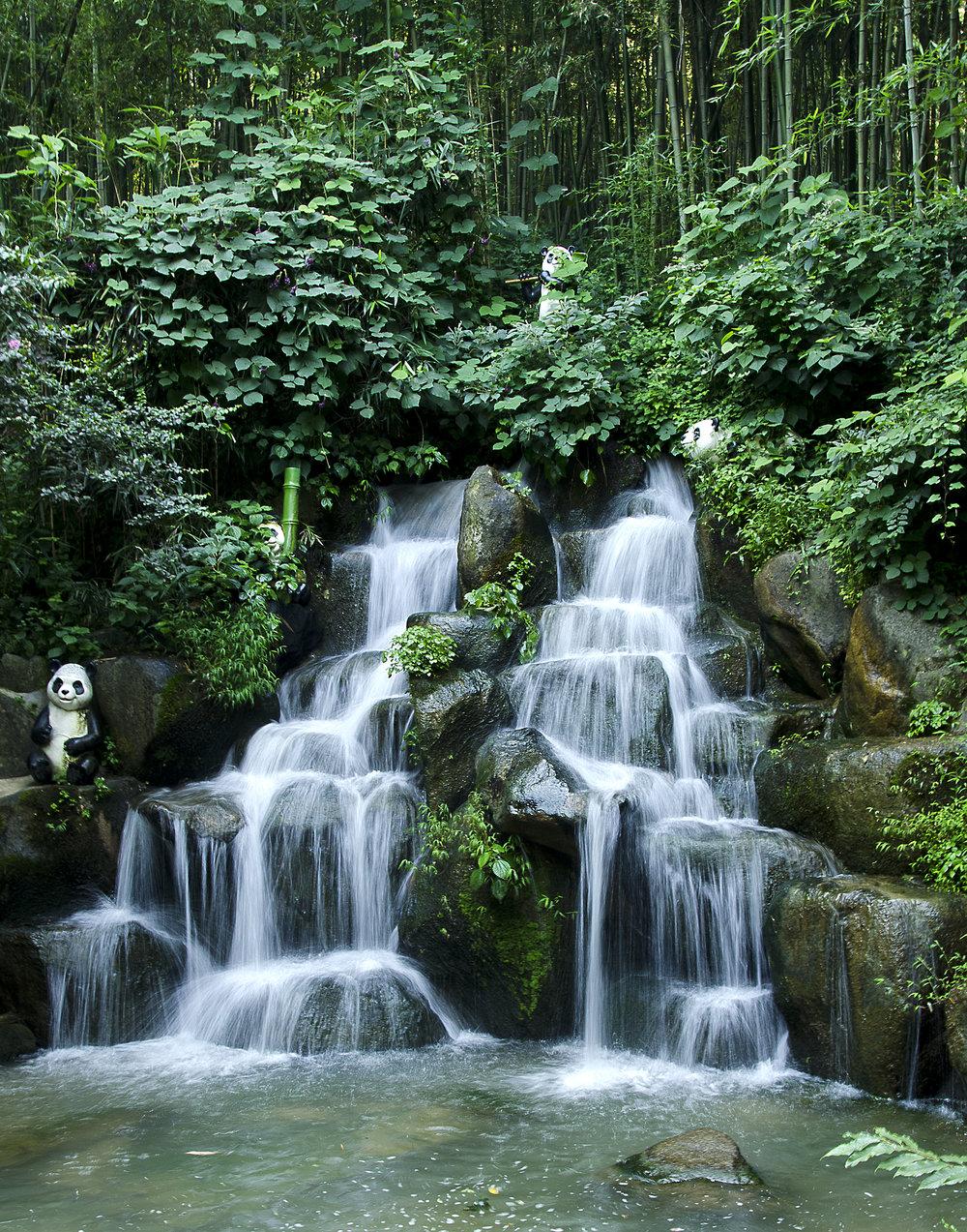 Spencer_Drake_Panda's_Waterfall_Photography_Waterfall_Korea_water_bamboo_forest_panda_green.jpg