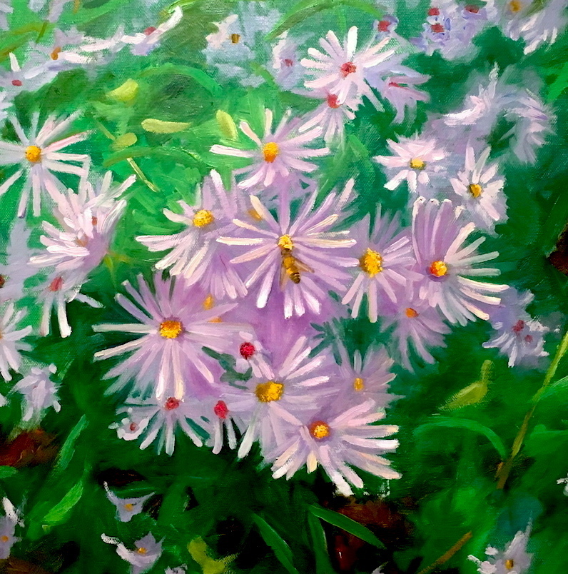 5. J.Dalrymple Native Vignette_ Aster amellus (asters) 18_18_ oil on canvas.jpg