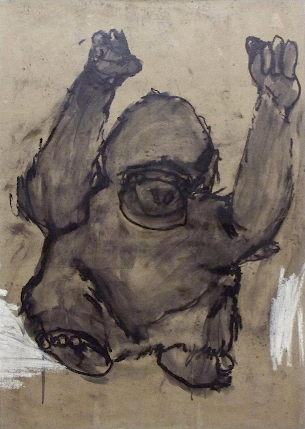 De la série «des gorilles et des hommes» 2