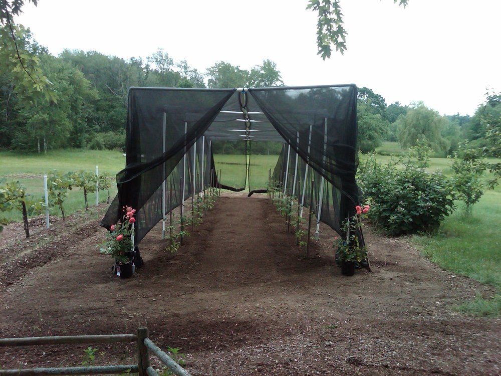 Screened field area for protecting and regulating UV to tomatoes and peppers -