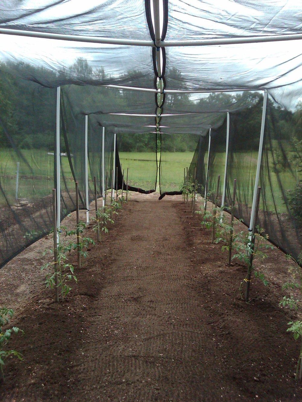 Farm_2011-1935.jpg